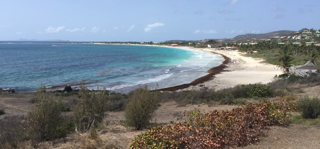 Nude Beach Observations in St. Martin
