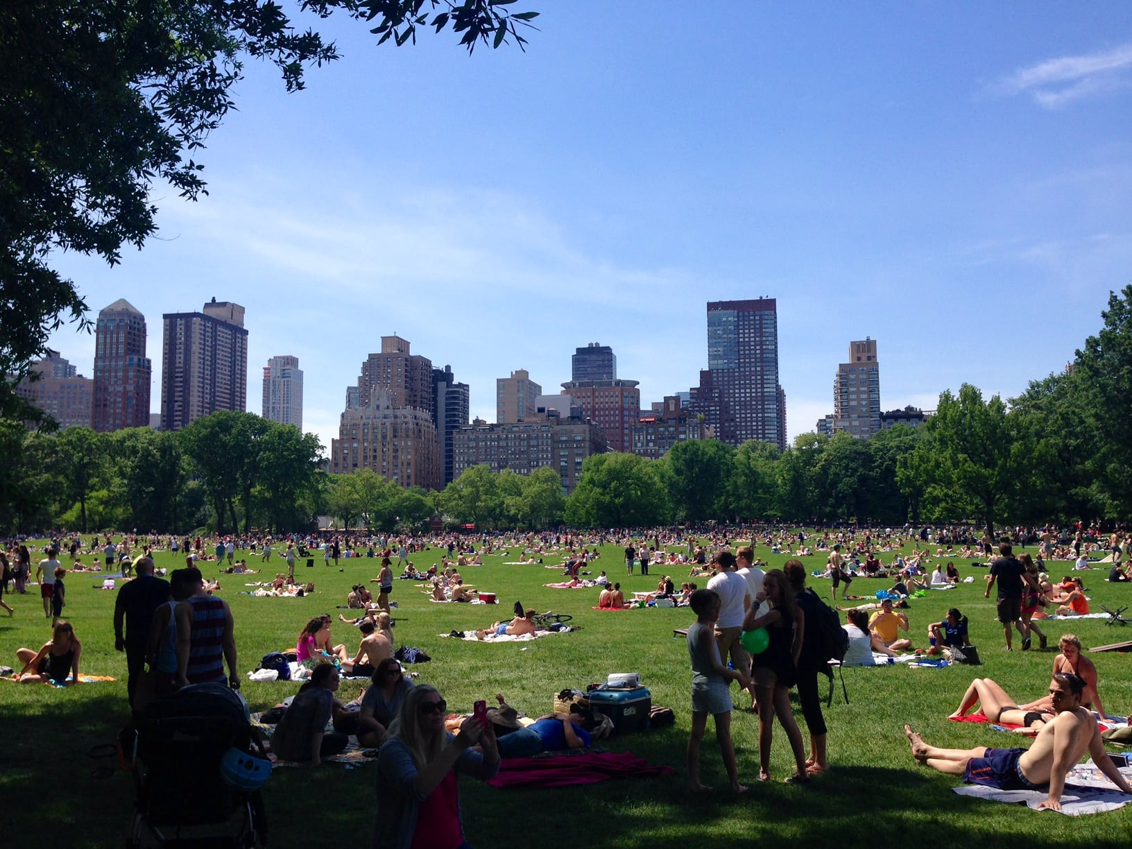 5 Best Areas to Visit in Central Park