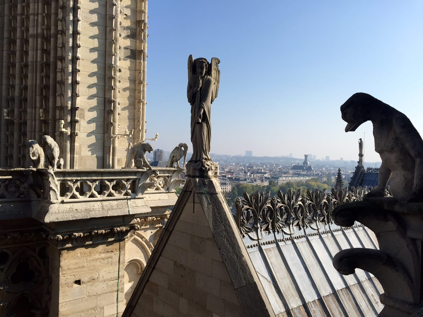 Morning with Notre Dame Gargoyles in Paris