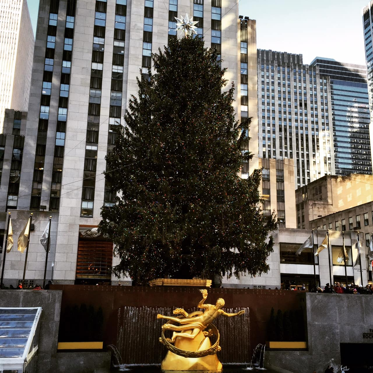 Best Things to Do During the Holiday Time In New York City