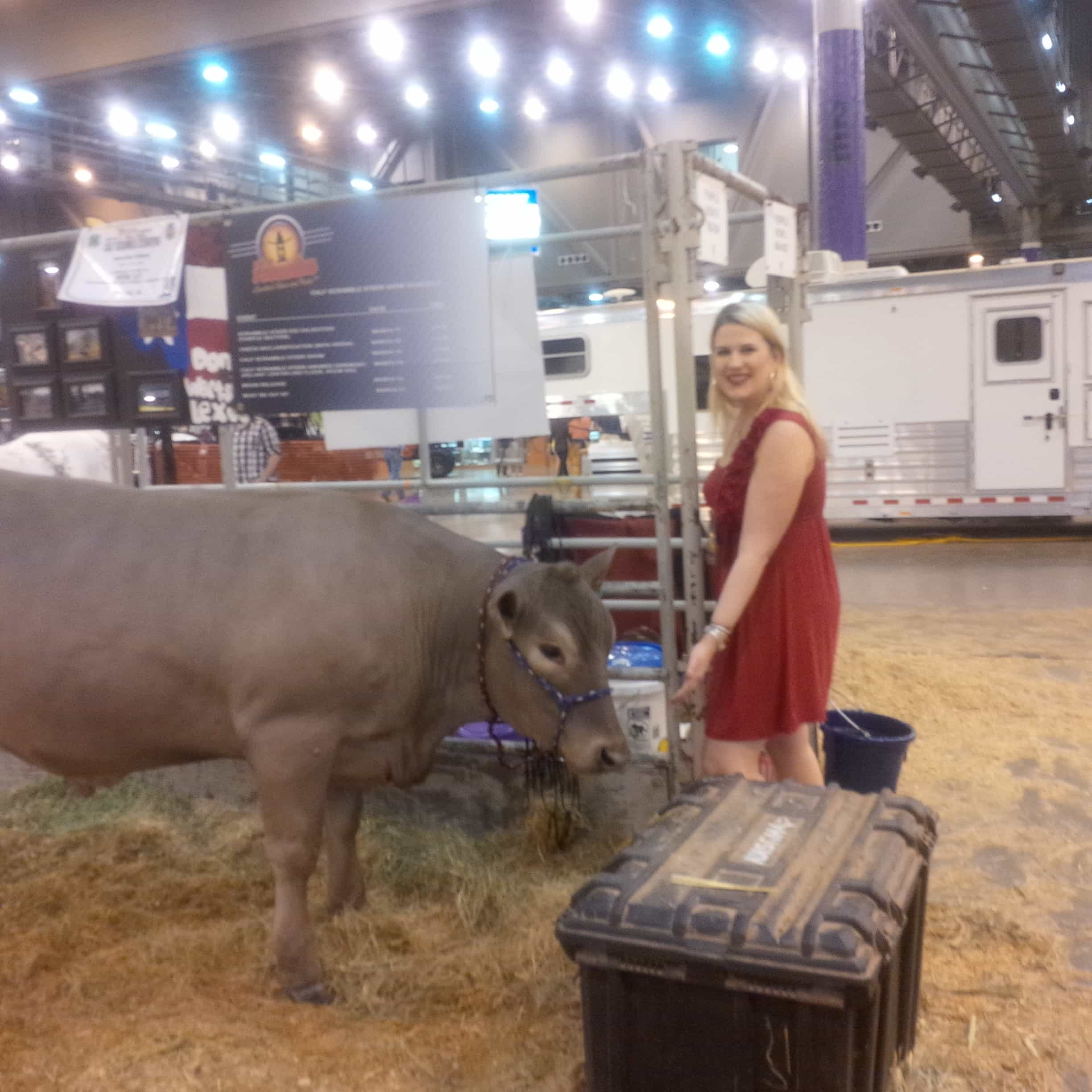 This Ain't My First Houston Livestock Show and Rodeo!