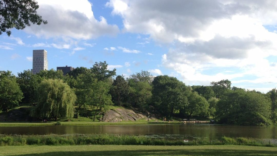 The Hidden Gems in Northern End of Central Park