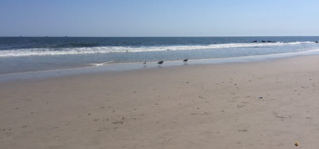 Pros and Cons of Long Beach, Long Island