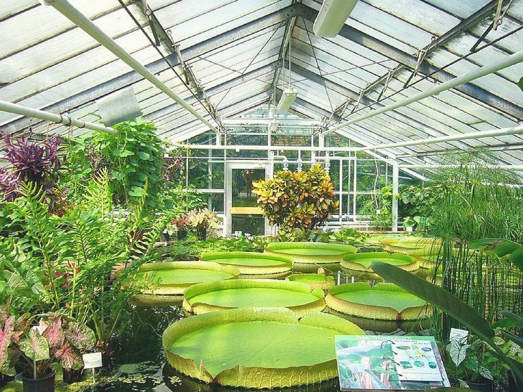 "Royal Botanical Garden - ""Things You Should Know Before Visiting Sydney (Guest Post)"""