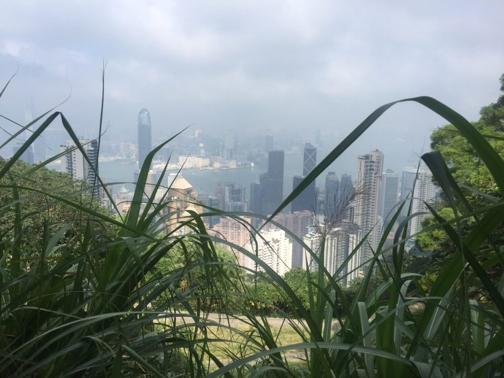 "I love the mix of nature and the city skyline.- ""Don't Miss Victoria Peak When Visiting Hong Kong"" - Two Traveling Texans"