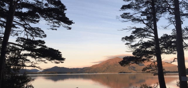 What to See When You Visit Killarney National Park