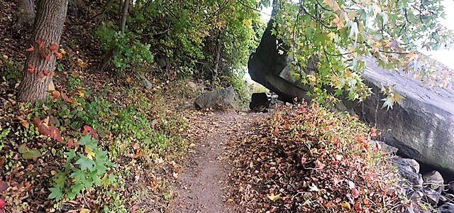 Palisades Interstate Park: Perfect For a Fall Hike