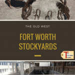 scenes from the Fort Worth Stockyards