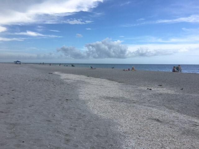 "Sanibel Island is more than just pretty beaches. - ""The Search for Sanibel Island Shells"" - Two Traveling Texans"