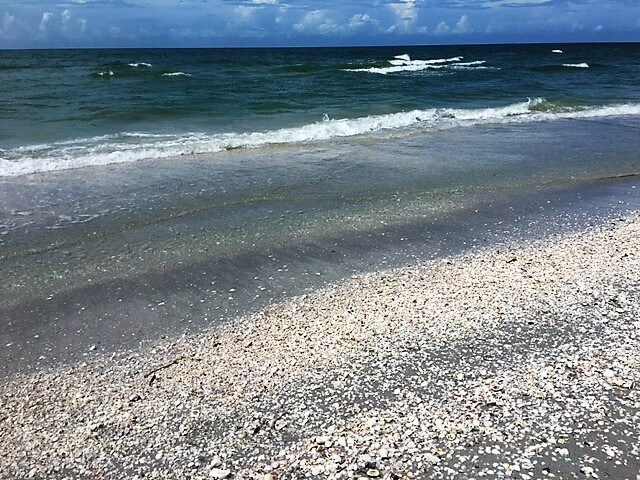 "So many shells on Sanibel Island, sometimes it hurt to walk! - ""The Search for Sanibel Island Shells"" - Two Traveling Texans"