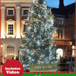 "christmas tree in York with text overlay ""York England Christmas Market"""