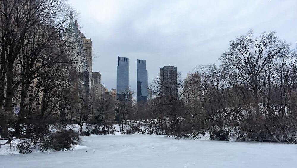 Central Park in NYC covered in snow. -