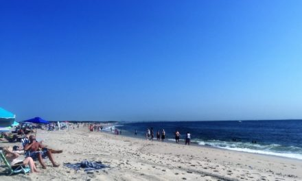 Easy Day Trip to Sandy Hook Beach, New Jersey