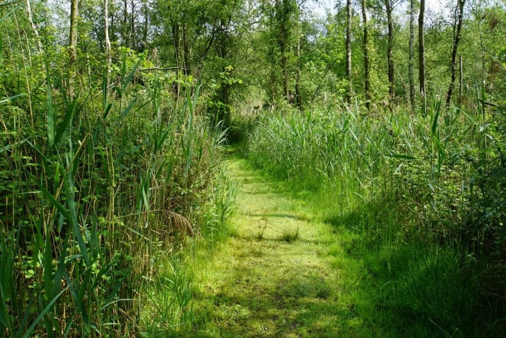 "We enjoyed doing the How Hill Nature Walk. - ""Exploring How Hill Nature Reserve in Norfolk, England"" - Two Traveling Texans"