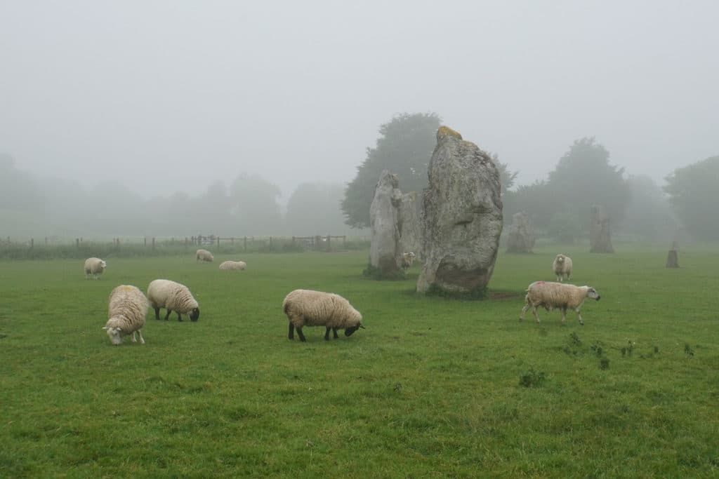 "Seeing the sheep grazing in the Avebury Stone Circle was special. - ""Avebury and Nearby Neolithic Sites in Wiltshire, England"" - Two Traveling Texans"