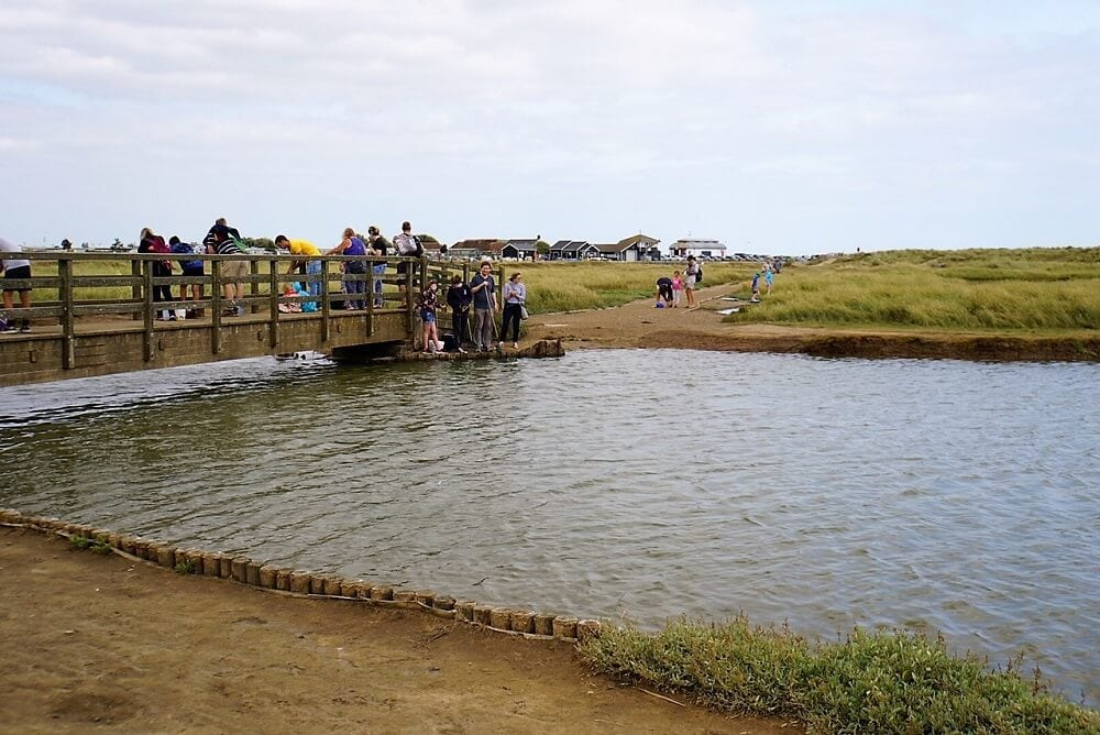 Bridge filled with people crabbing in Walberswick - Two Traveling Texans
