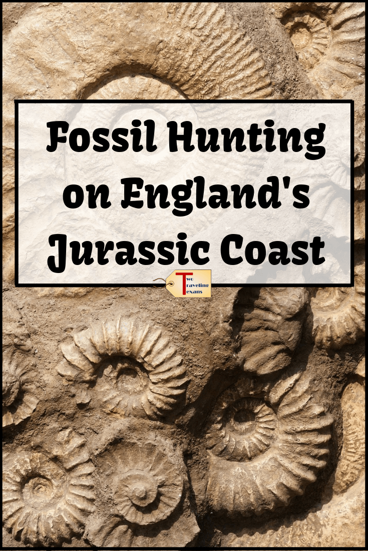 Want to find go fossil hunting on the Jurassic Coast? Get information on where to go and what to look for.  Find out if it's better to go on your own or do a guided fossil hunting tour. Read about our experience on the Fossil Walk with the Lyme Regis Museum in Dorset, England | fossil hunting tips | jurassic coast england | fossil hunting dorset | lyme regis fossils | lyme regis beach | lyme regis dorset #england #travel