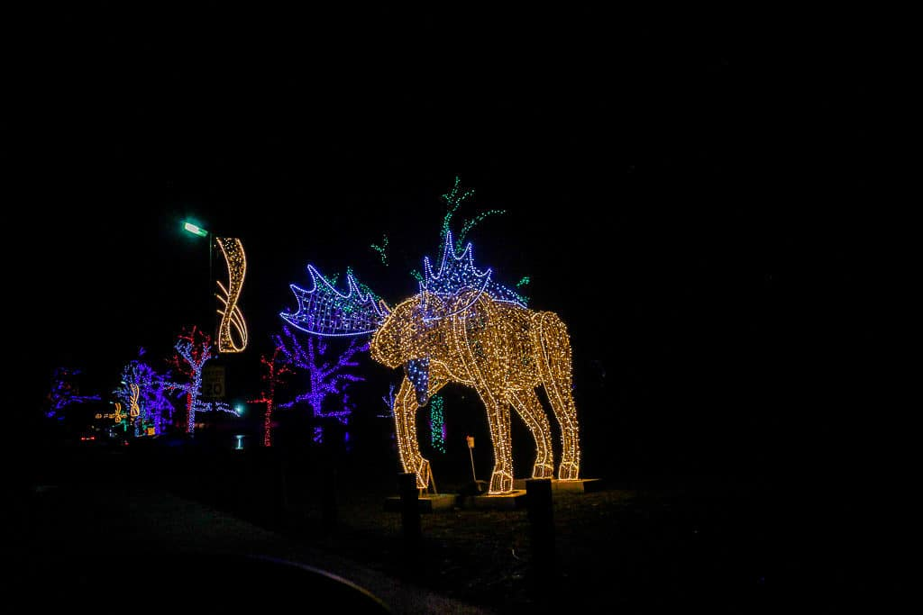 Lots of pretty light displays at the Niagara Falls Light Festival during the winter