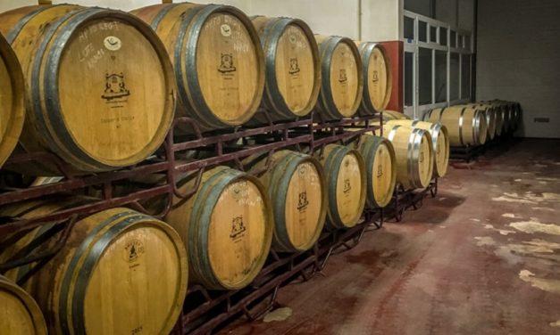 Wine Tasting in the Algarve & More