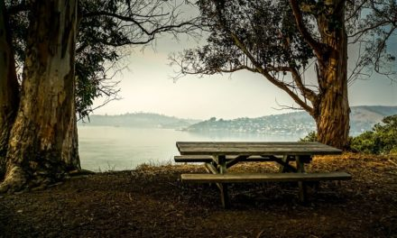 What to Do in Angel Island in San Francisco Bay