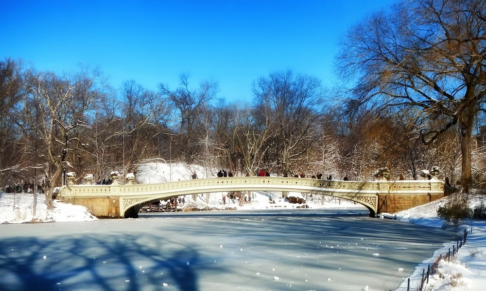 central park lake cover in snow