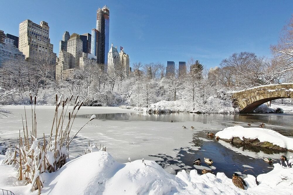 Central Park pond covered in snow