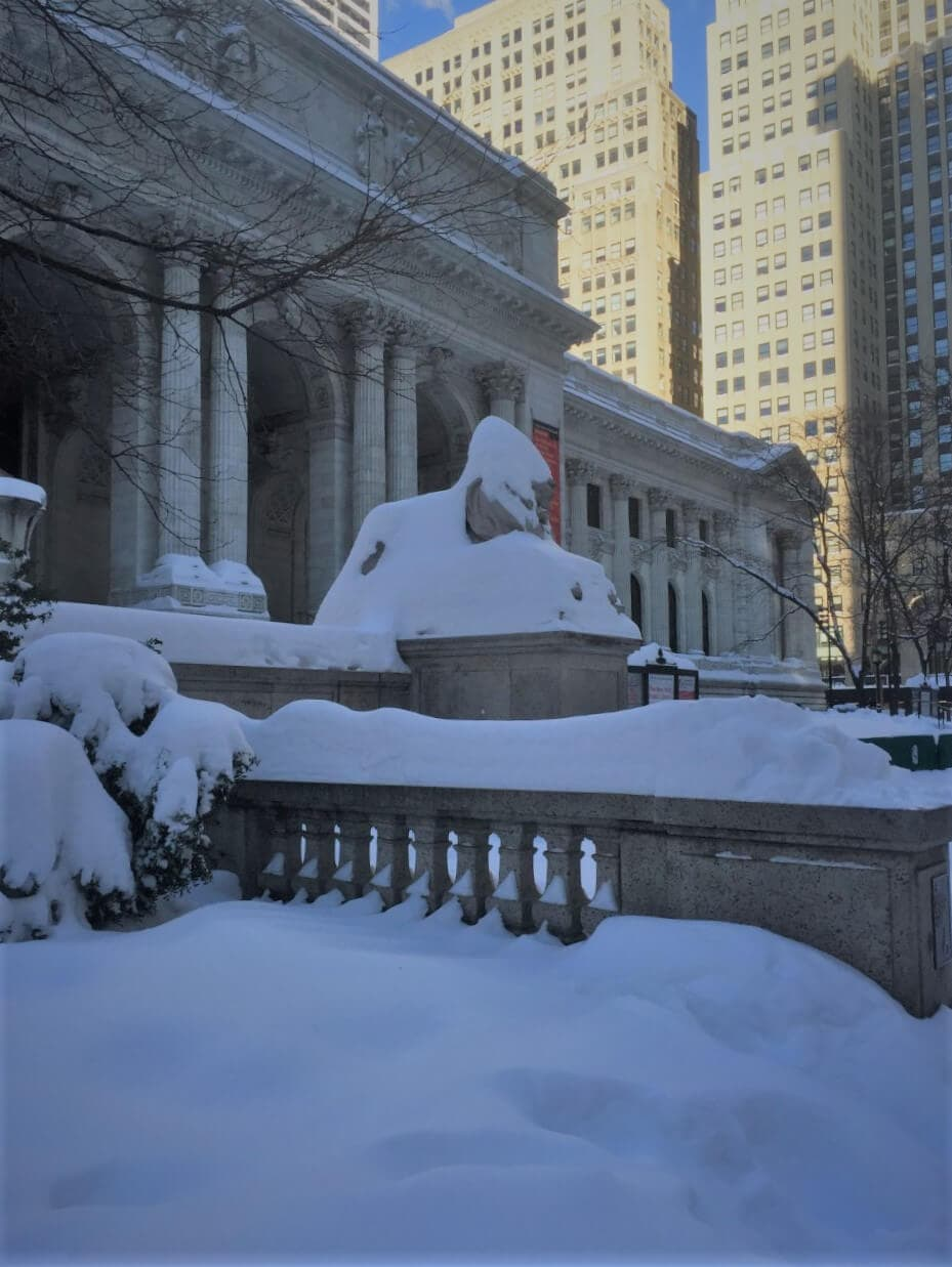 New York Public Library covered in snow