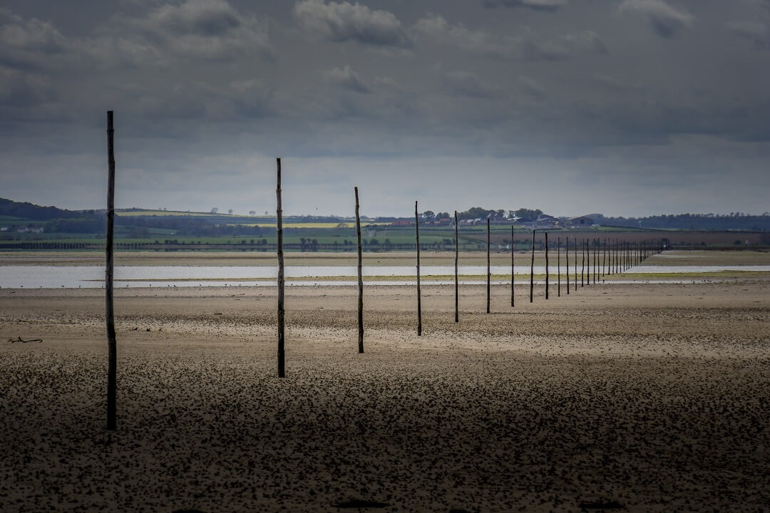 the pilgrims way to Holy Island is marked by poles