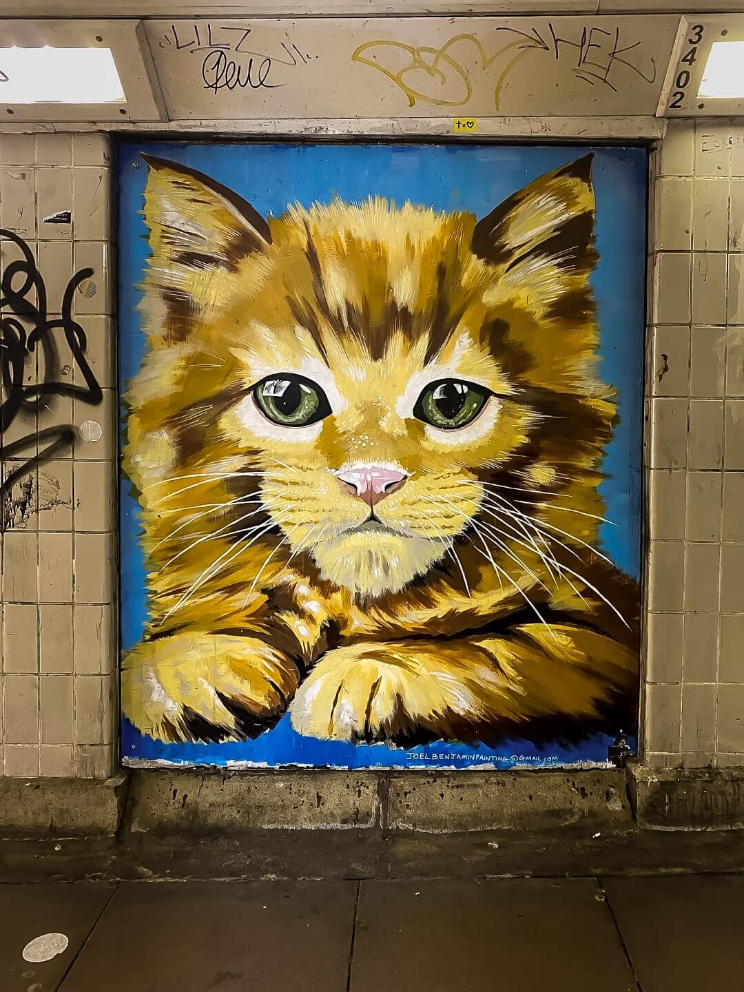 cute kitty painted