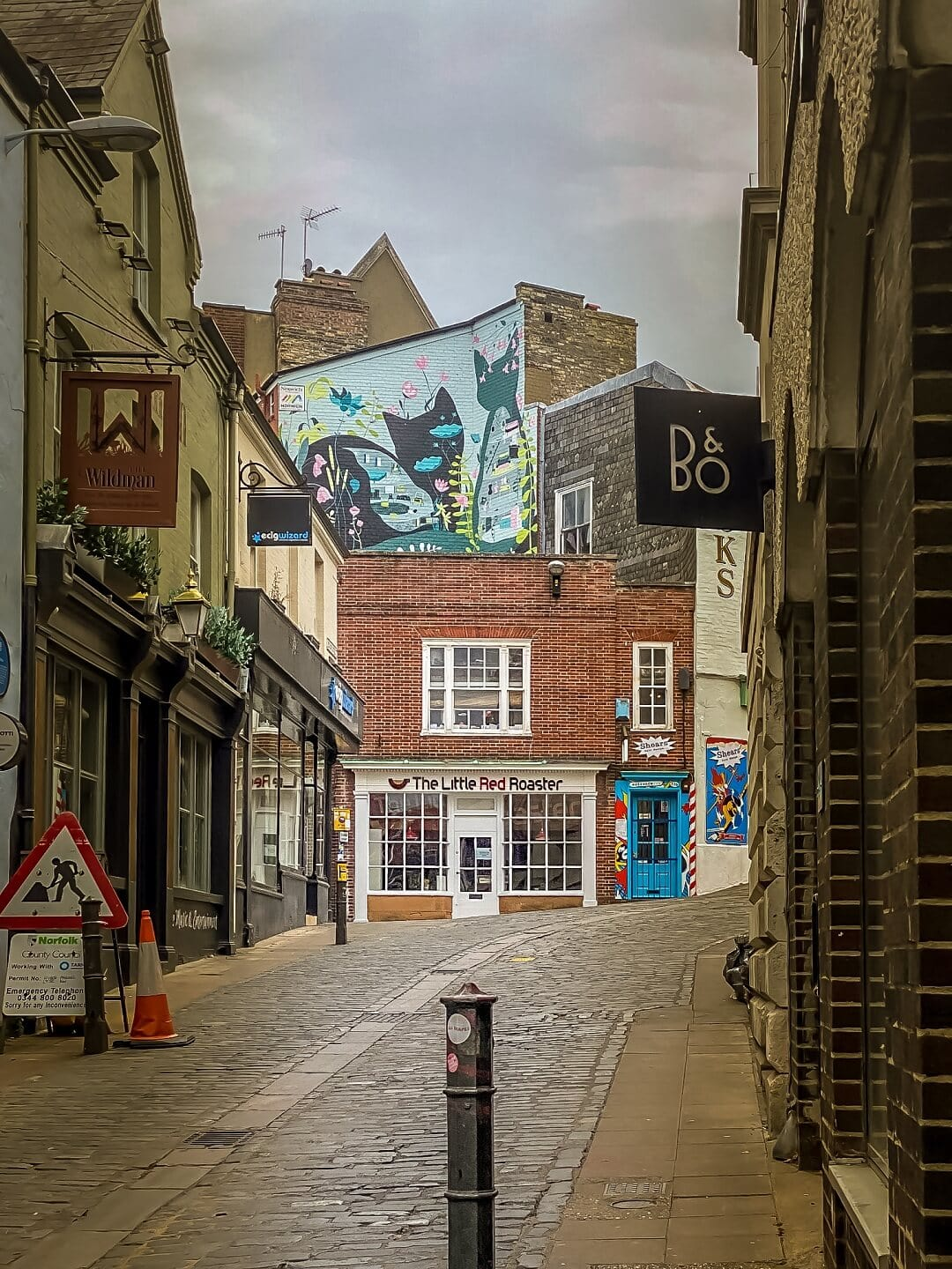 norwich city centre street with cat mural