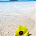 """beach scene with text overlay """"15 beach gift ideas"""""""