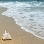 15 Best Gifts for Beach Lovers
