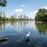 Best Day Trips from Austin Texas